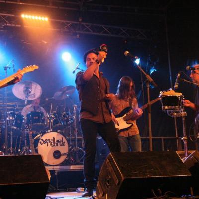 2009: TheYardbirds